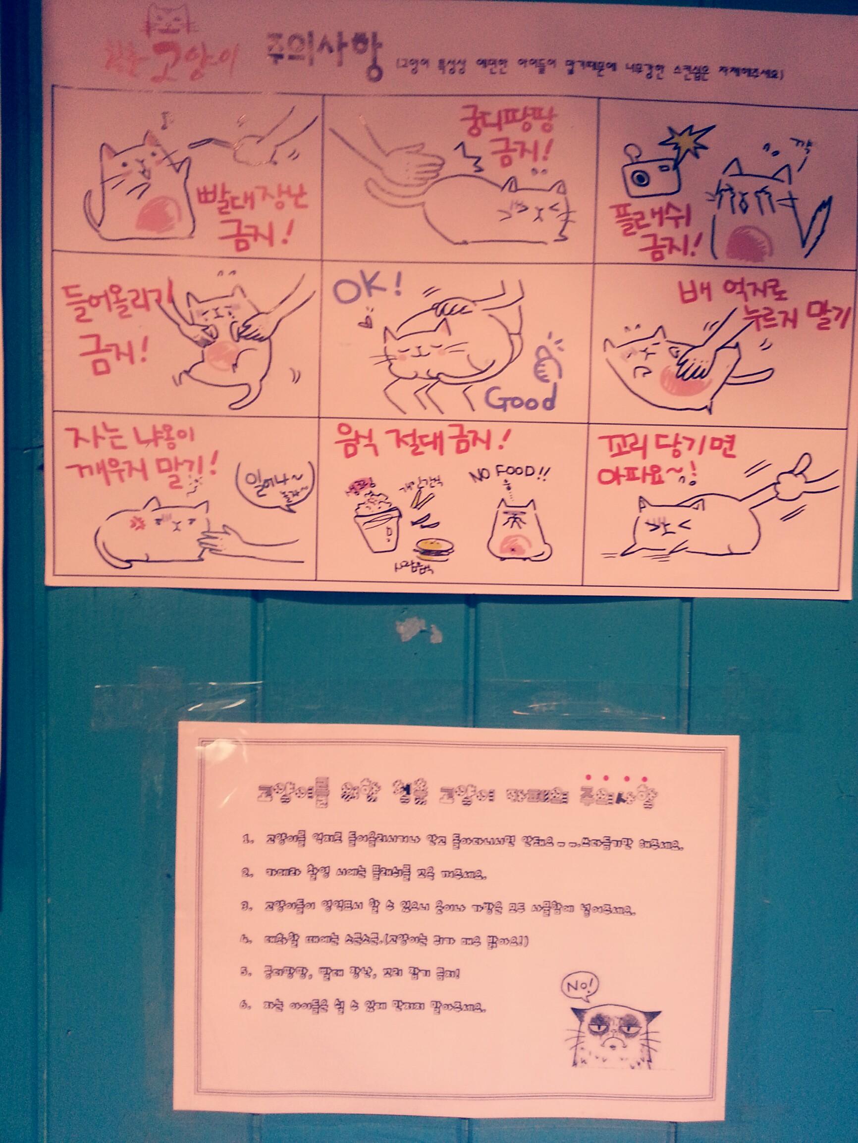 Cheongchun Cat Cafe