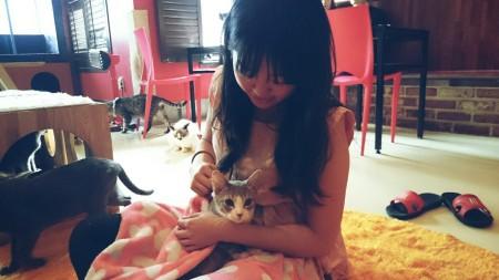 cat_tenderness_dodger