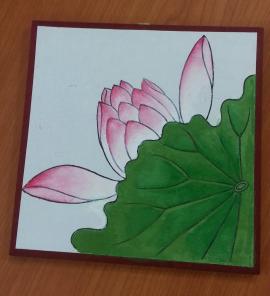 May_Lotus flower