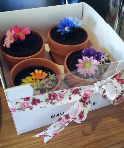 Cute flower pots to take away and keep at home