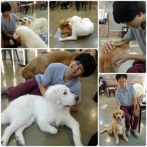 06. vic big dogs