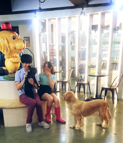 12. having fun at dog cafe