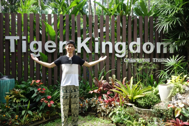 Tiger Kingdom vic
