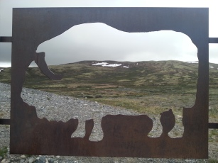 07. Snohetta bull sign